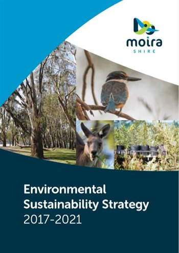 Environmental Sustainable Strategy cover.jpg